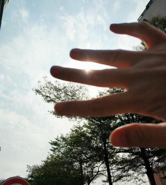 """看,今日 """" 雨水 """" 气节,中午,调皮的阳光却 """" 赶 """" 走雨儿,拨开云层,撒在了我的指间、手心。摄于吕岭路日报大厦。曾静 摄"""