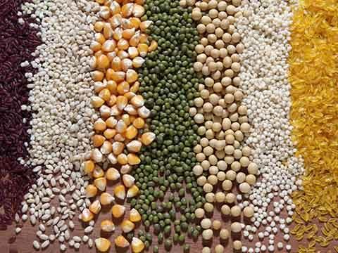 规模再提升 第三届中国粮食大会19日将在榕开幕