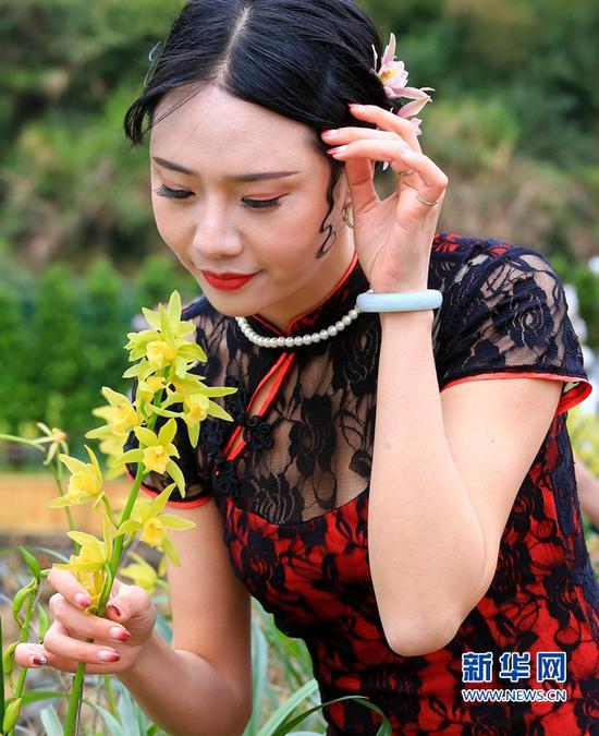 身穿旗袍的女士在花间赏花(3月8日摄)。新华网 肖和勇 摄