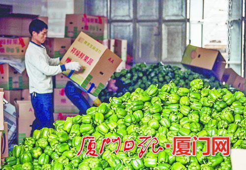 堆成了小山的圆椒,前来收货的工人和村民正忙着将它们装箱打包。