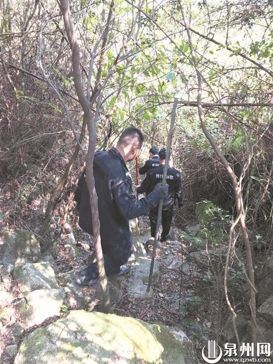 深山里藏5个神秘帐篷 民警跋涉2.5小时抓获3名嫌疑人