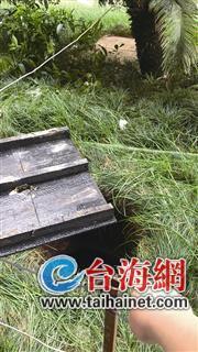"""▲昨日,事发处已被围起""""警戒线"""""""