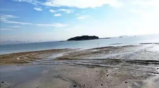重机制严监管 湖里区率先完成近岸海域超规划养殖整治