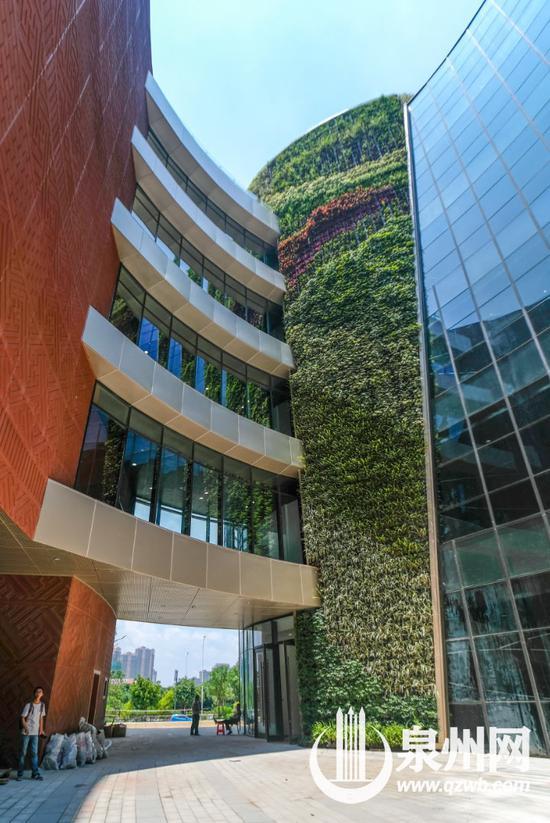 """科技馆、规划馆中间以""""阳光谷""""相联系,直抵楼顶的绿植墙面生机盎然。"""