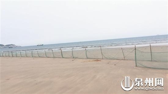 """退潮后,惠女湾海边出现""""绝户网""""。"""