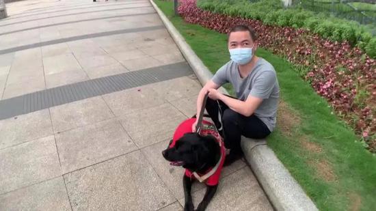"""暖心!厦门首只导盲犬""""宝六"""":用我一生,做你的眼"""