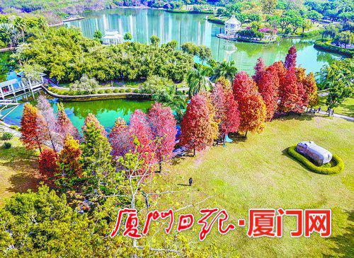 俯瞰南湖公园,红黄绿相衬,漂亮极了。