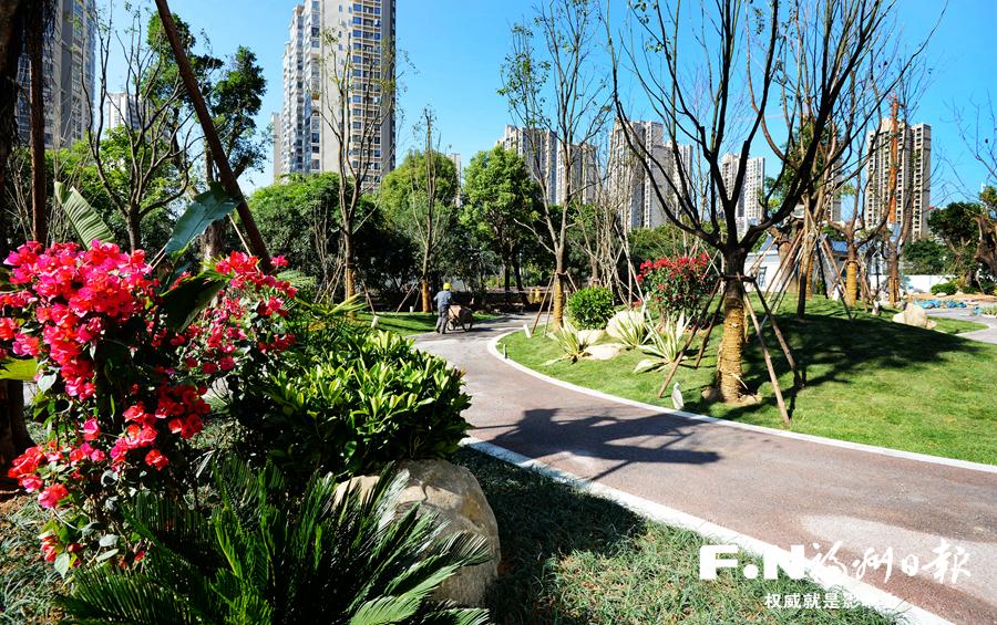 福州五四北居民乐享绿色生态福利 公园建在家门口
