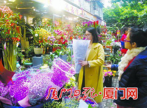 昨日,市民到松柏花市买花。