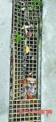 """在""""快洁利共享洗车""""网点,排水渠内垃圾堆积,影响污水排放。"""