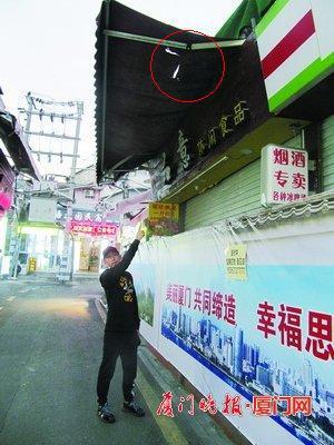 """游客来厦门游玩天降""""砖块""""砸伤脚 律师:应及时报警"""