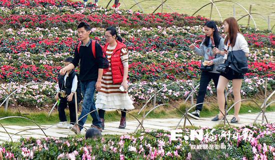 游客文明赏花。记者 池远 摄