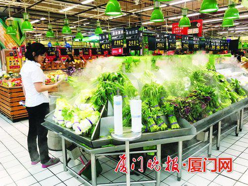 -我市部分水叶菜品种价格小幅上涨。