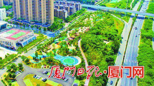 图为翔安大道公园。