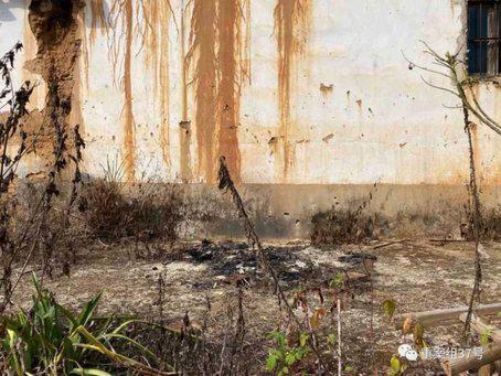 ▲崇泰寺东墙外陈水兴自焚的痕迹。新京报记者 赵朋乐 摄