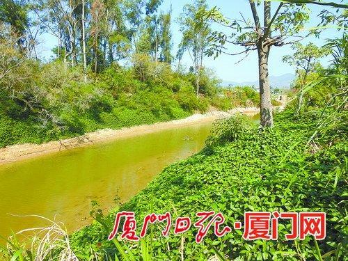 现在的莲溪有乡愁、有野趣。