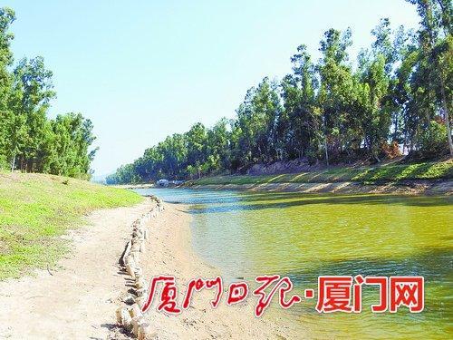 """""""木桩护岸""""比砖石护岸更生态、更绿色。"""