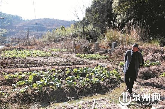 遗址所在地部分被村民开垦成为菜地