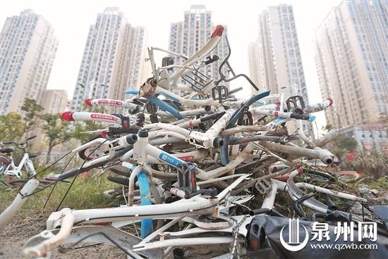 江滨南路靠近田安大桥下,被遗弃的破旧共享单车