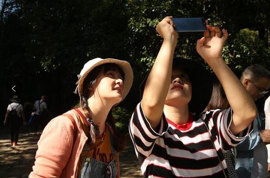 游人在景区拍照留影