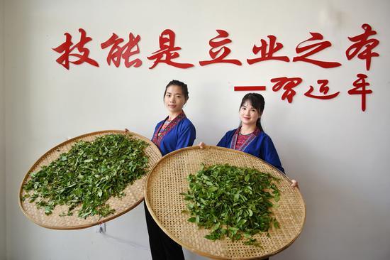 总站在福建武夷山举办茶产业技能培训班