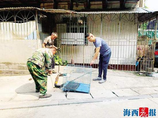 """商铺门前是""""鸽子锁""""的重灾区。此外,废弃的狗笼也成为占位的道具。"""