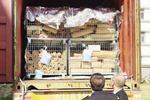 厦海关摧毁4个走私进口高档檀香木团伙 案值2亿元