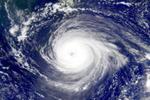 今年福建台风较常年略多有7到8个 或有早台风