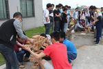 福建工程学院2500名大学生与泥瓦匠比拼砌墙技术