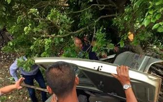 漳一小车撞树侧翻汽油泄露 两老人被困