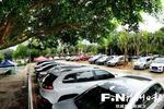 福州今年已建成10个林荫停车场 还有一批年底前建成