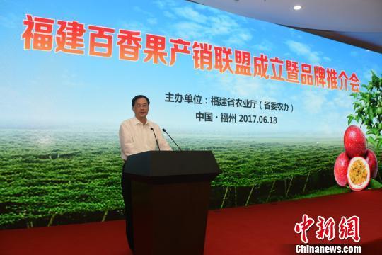 福建省副省长黄琪玉推荐百香果 刘文标 摄