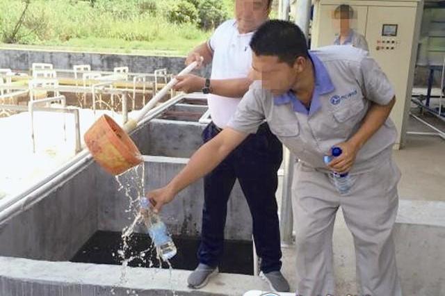 福建漳平养猪废水变养鱼清水 废水处理后直接排放