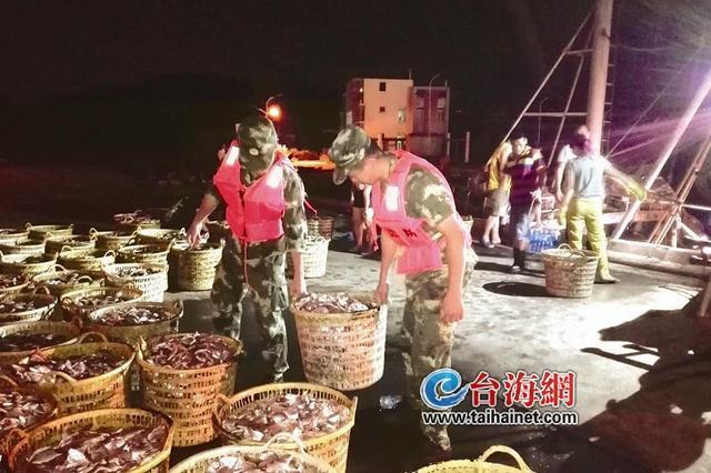 """""""天鸽""""预计今日登陆 532名泉籍渔民到漳州避风"""