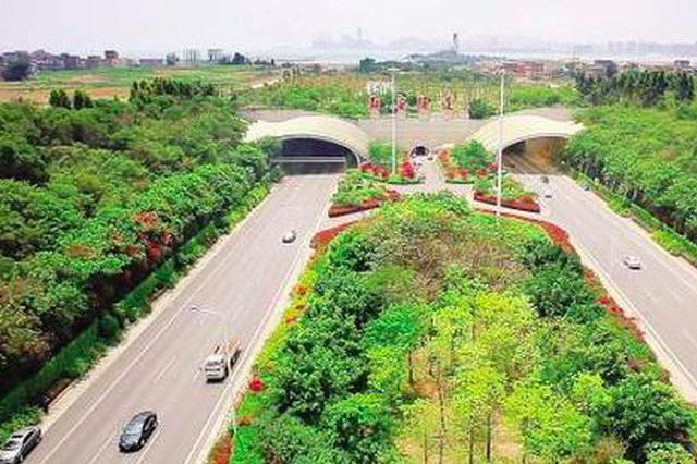 厦门翔安跨岛发展提速增效 一条海底隧道改变一座城