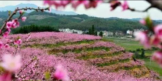 图片来源:三明旅游
