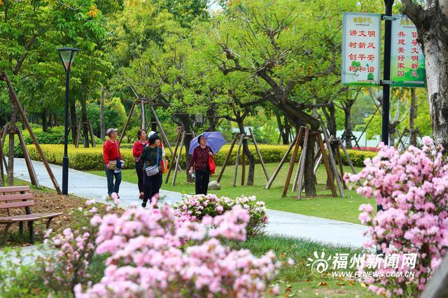 福州琴亭湖公园杜鹃花盛开 市民纷纷出游踏春赏花