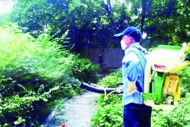 在蚊帐里拍死13蚊子 疾控专家:当心蚊子传播疾病