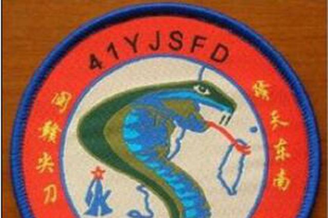 解放军福建空军臂章现眼镜蛇图 蛇信直压台北