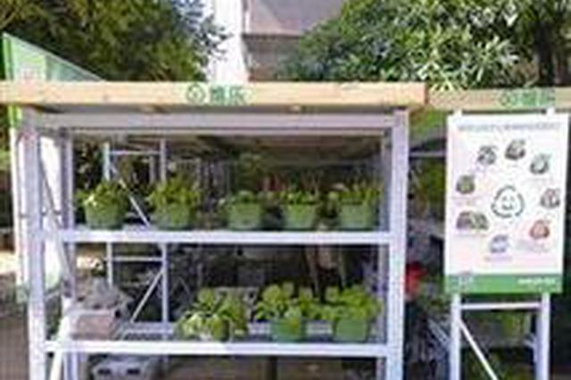 厦门:厨余垃圾可兑换新鲜蔬菜 岛内已有4个置换点