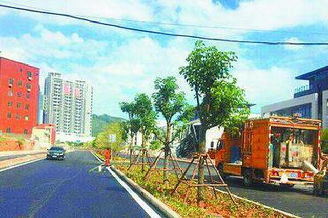 厦环东海域新城将新添一交通要道 串起两大主干道