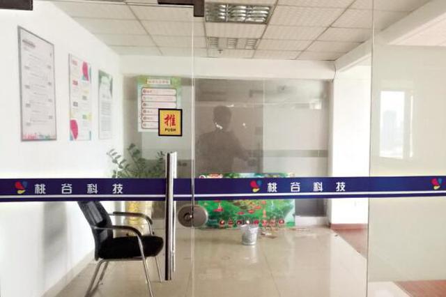 漳州惊现网游骗局 网上认养桃树半价购车