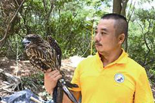厦门居民伸手救助受伤大鸟 经过疗养将重回自然