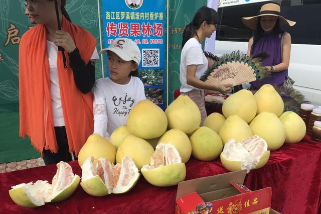 泉州洛江河市镇举办田园嘉年华暨首届丰收节