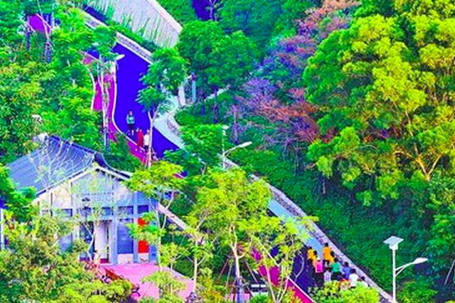 至2020年厦门公园数量将增至342个 翔安公园数最多
