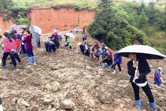 龙岩工地挖出银元 上百村民深夜带锄头挖宝