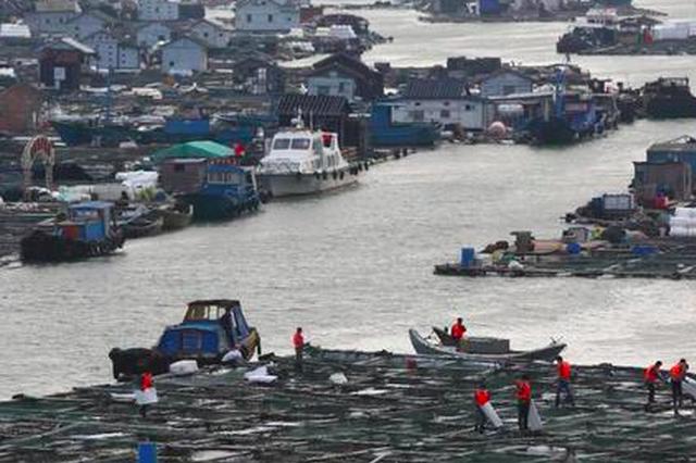 泉港碳九泄漏事件官方最新通报 4名企业人员被调查