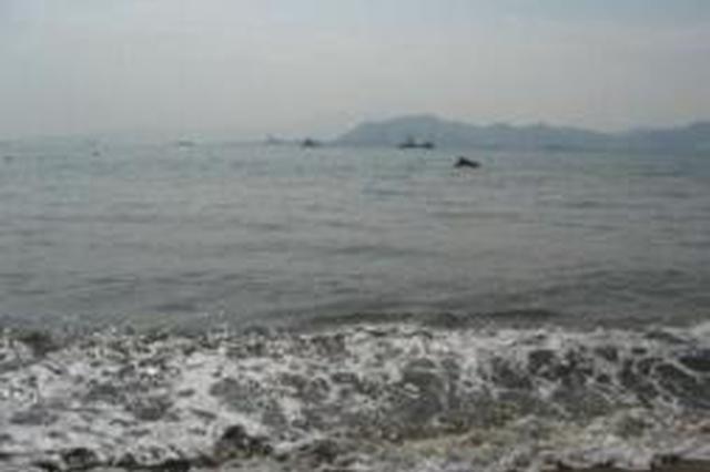 泉港碳九泄漏事故7人被刑拘 厦门海域海水未发现异常