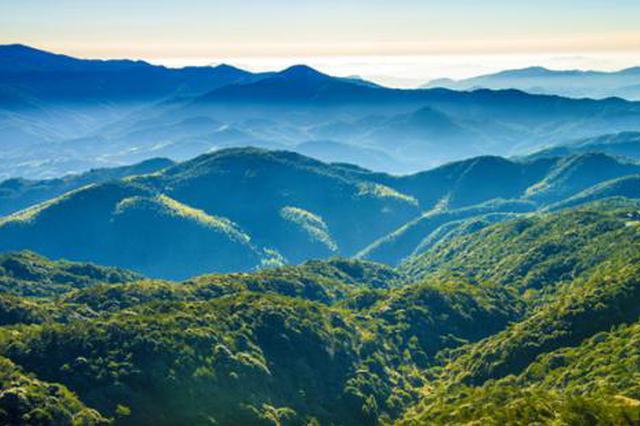 今年福建省已完成造林10万亩 造林绿化实现开门红