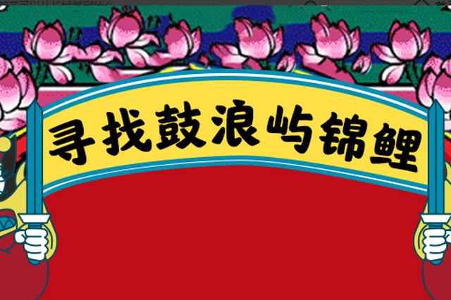 """【世遗鼓浪 春节献鲤】寻找2019鼓浪屿""""锦鲤"""""""